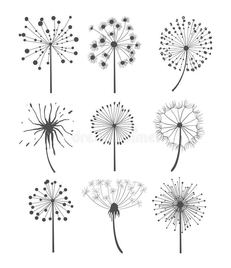 Monokrom illustration för maskrosuppsättningvektor stock illustrationer
