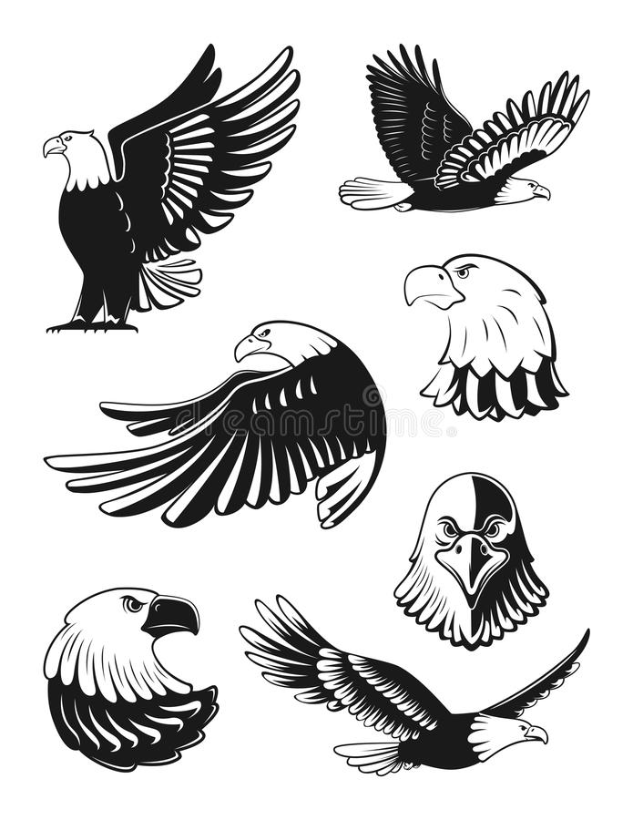 Monokrom illustrationuppsättning av örnar Vektorbeståndsdelar för logo, förser med märke, eller etiketter planlägger vektor illustrationer