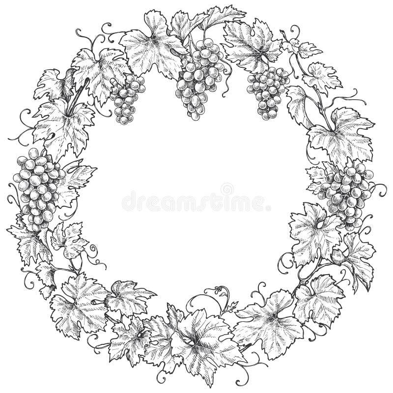 Monokrom ram för druvafilialrunda vektor illustrationer