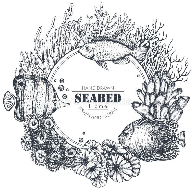 Monokrom ram med hand drog revkoraller och exotiska fiskar vektor illustrationer