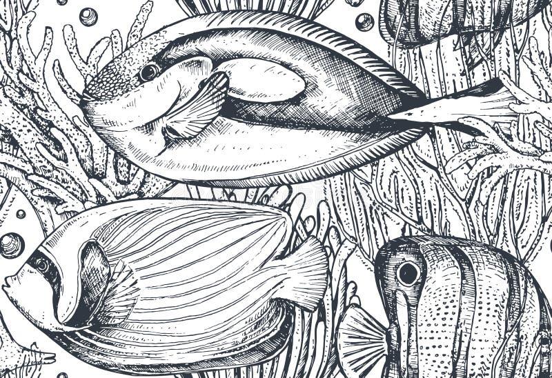 Monokrom sömlös havsmodell för vektor med tropiska fiskar, alger, koraller royaltyfri illustrationer