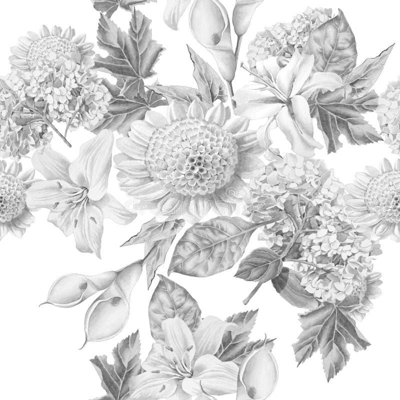 Monokrom sömlös modell med härliga blommor lilia calla hydrangea vektor illustrationer