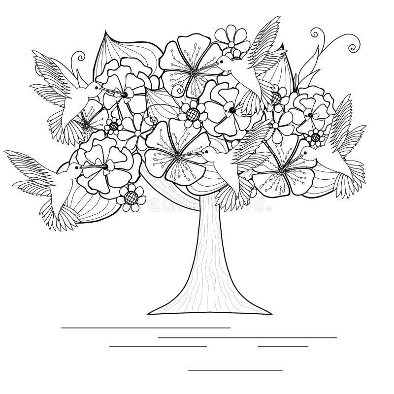 Monokromt blommande träd med kolibrier för färgläggningbok vektor illustrationer