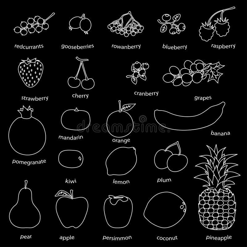 Monoline owoc i ilustracja wektor