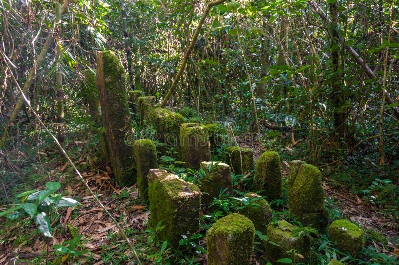 Monoliths. Betsileo in the Ranomafana National Park royalty free stock images