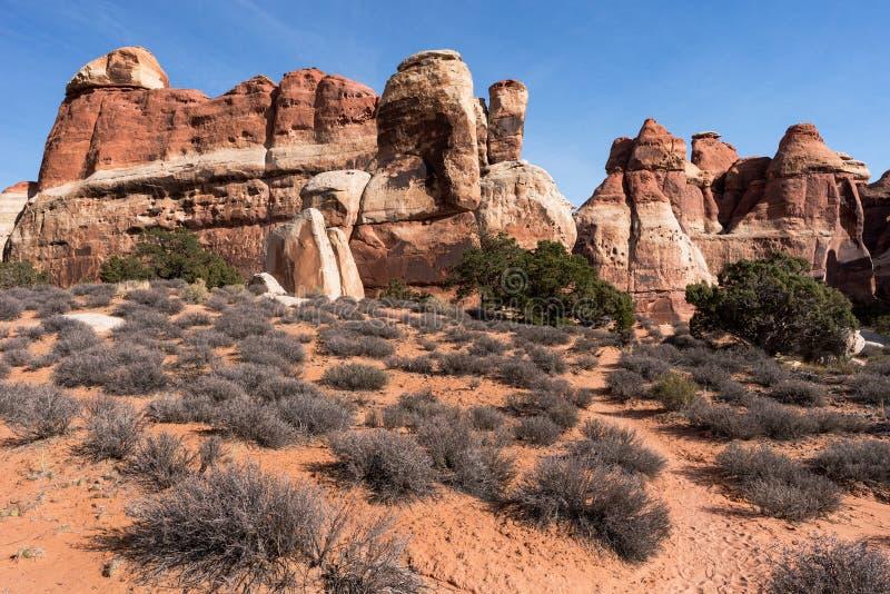 Monolitiskt vagga väggen i den Canyonlands nationalparken royaltyfri fotografi