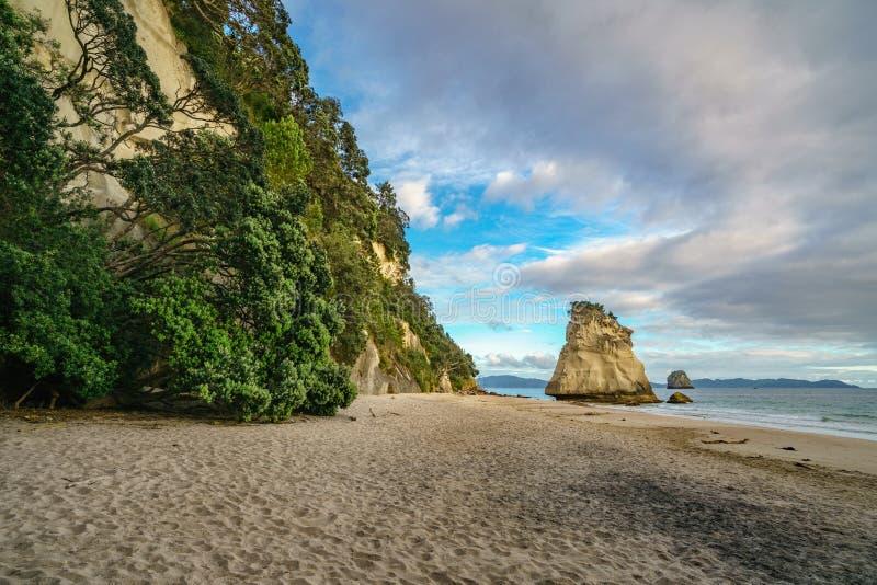 Monolito poderoso de la roca de la piedra arenisca en la playa de la ensenada de la catedral, coromandel, Nueva Zelanda 4 fotografía de archivo libre de regalías
