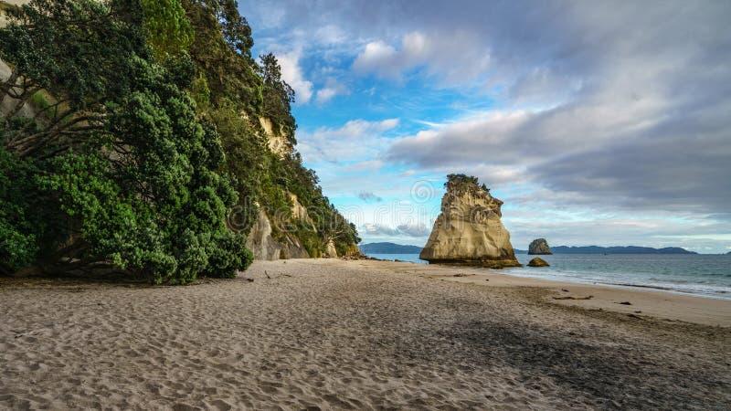 Monolito poderoso de la roca de la piedra arenisca en la playa de la ensenada de la catedral, coromandel, Nueva Zelanda 5 fotografía de archivo libre de regalías
