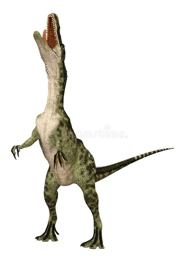 Monolophosaurus do dinossauro da rendição 3D no branco ilustração royalty free