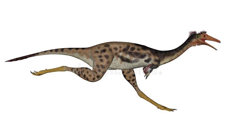 Mononykus dinosaur running - 3D render. Mononykus dinosaur running in white background- 3D render royalty free illustration