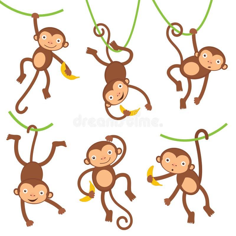 Monos divertidos fijados stock de ilustración