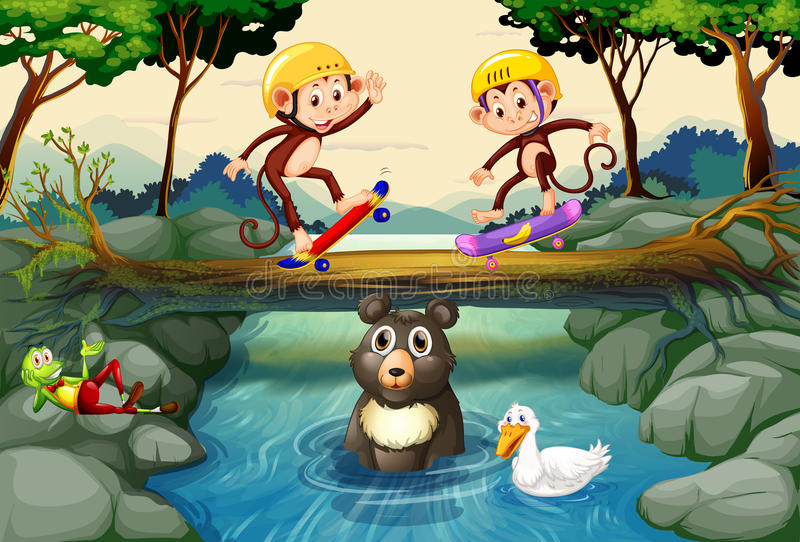 Monos en el monopatín en el bosque libre illustration