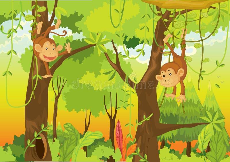 Monos en la selva ilustración del vector