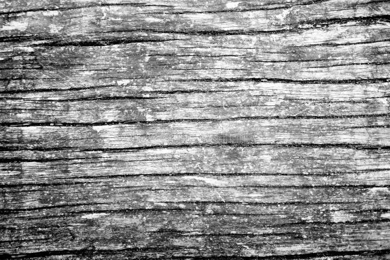 Monotone ξύλινη σύσταση σιταριού στοκ εικόνα με δικαίωμα ελεύθερης χρήσης