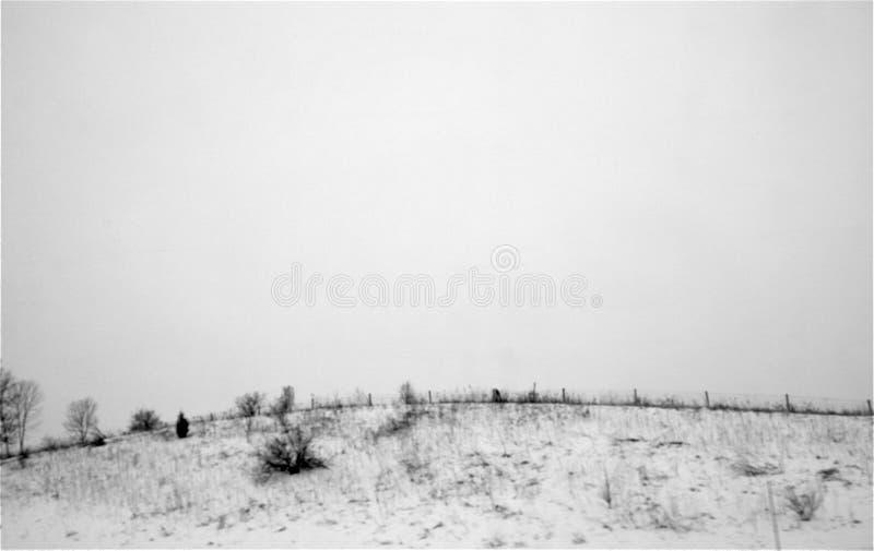 Monotone, χαμηλός λόφος που καλύπτονται στο χιόνι και μικροί θάμνοι, ψηλή χλόη, στοκ εικόνες