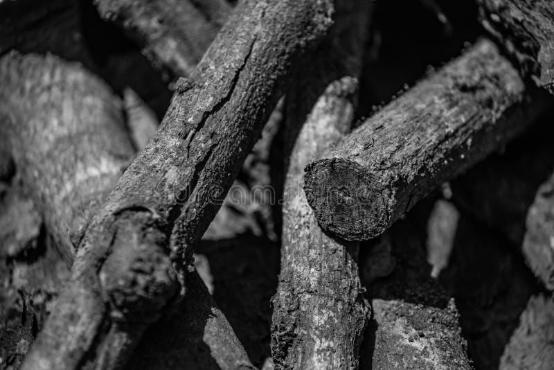 Monotones Mangoholz stockbilder