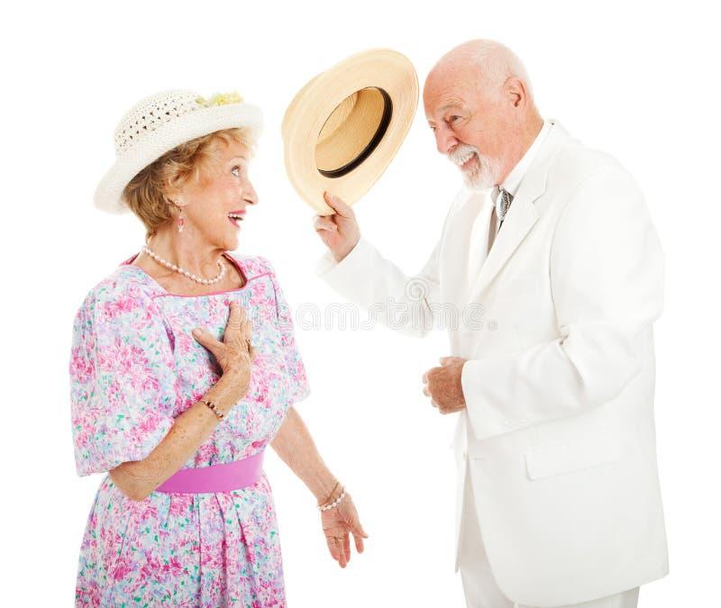 Chevalerie du sud - couple supérieur photos stock