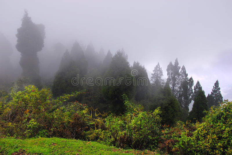 The monsoon. The mountain-scape during the monsoon season stock photos