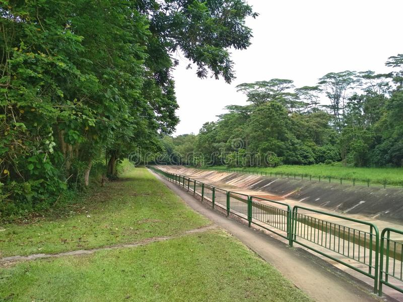 Monsoon canal. Big and wide monsoon drain in Tengah forest, Singapore royalty free stock photography