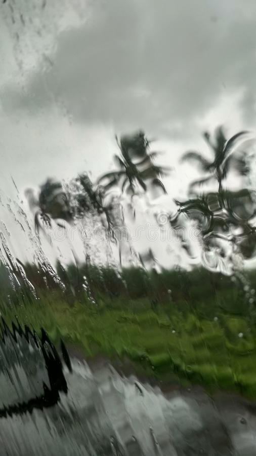 Monsoon. Coconut, trees, nature, free, travel, business, beautiful, smile, peace, peaceful, happens, happiness, evening, morning, rain, blur royalty free stock image