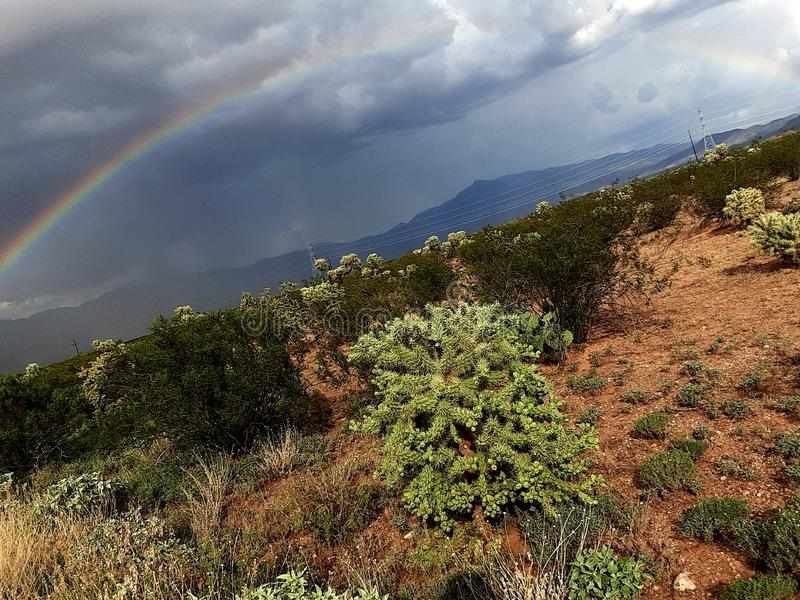 Monsoon. Rain, rainbow, cactus, desert, storm, showers, creosote, mountains royalty free stock photos