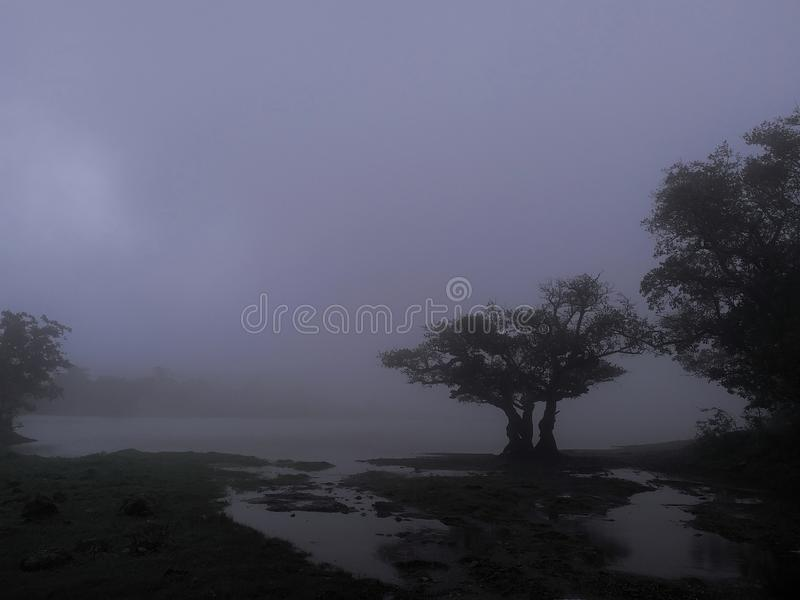 Monsoon season. With haze and heavy clouds in the environment stock image