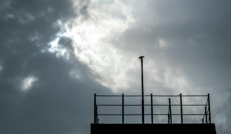 monsoon fotografering för bildbyråer