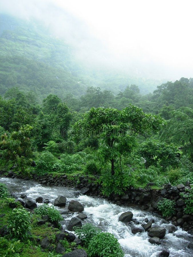 Download Monsoon Stream stock image. Image of greenery, home, field - 1096145