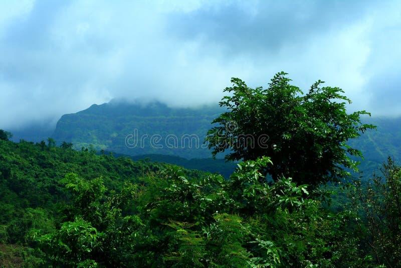 monsoonsäsong royaltyfri bild