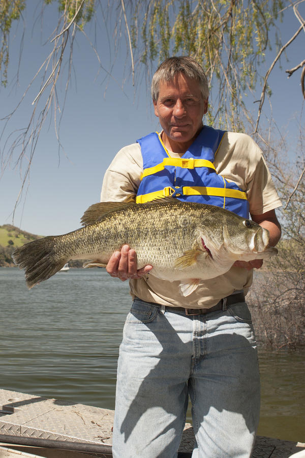 Monster Bass. A fisherman holding a giant 13.5-pound largemouth bass caught at Lake Del Valle in California royalty free stock photos