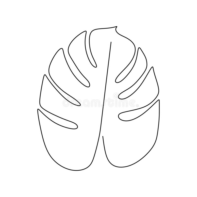 monstera叶子一被隔绝一白色背景的线描传染媒介例证最低纲领派设计简单派样式手拉 向量例证
