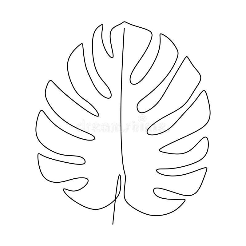 monstera叶子一被隔绝一白色背景的线描传染媒介例证最低纲领派设计简单派样式手拉 库存例证
