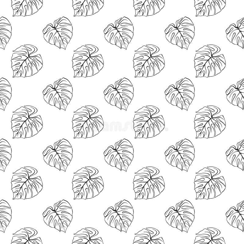 Monstera叶子热带植物墨水线艺术手拉的剪影无缝的样式纹理背景传染媒介 库存例证