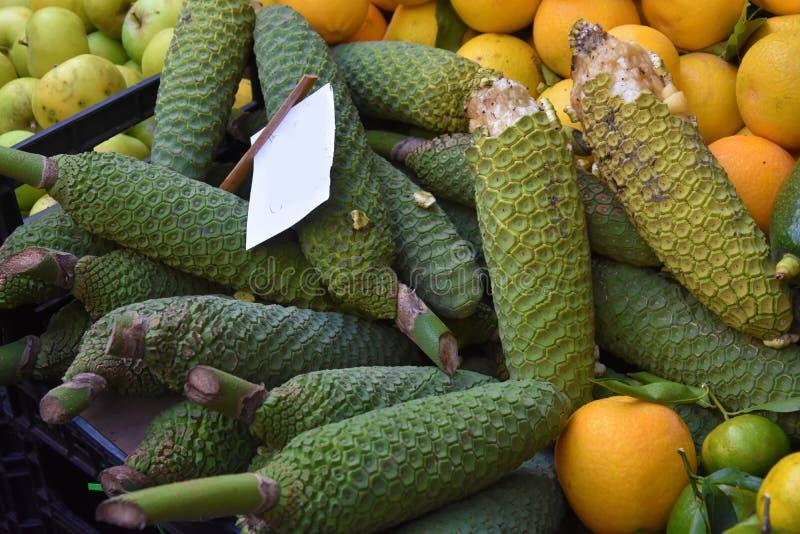 Monstera或菠萝香蕉在市场上在马德拉岛 库存图片