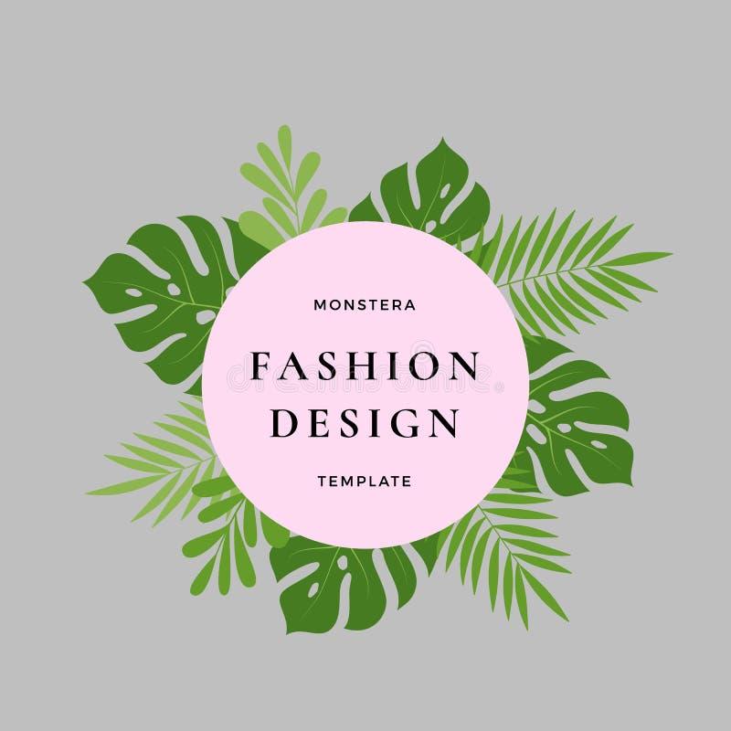 Monstera棕榈热带叶子时尚设计卡片 与圆的横幅和经典印刷术的抽象绿色叶子 桃红色 皇族释放例证