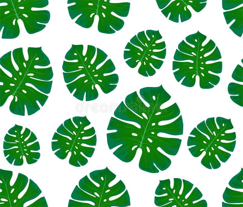 monstera bezszwowy deseniowy druk z liśćmi Projekt tkaniny i tkaniny Modni palma liście royalty ilustracja