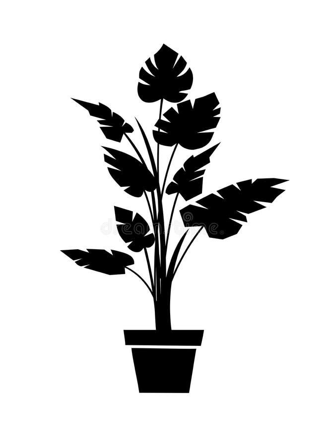 Monstera black silhouette vector illustration. Houseplant in pot stock illustration