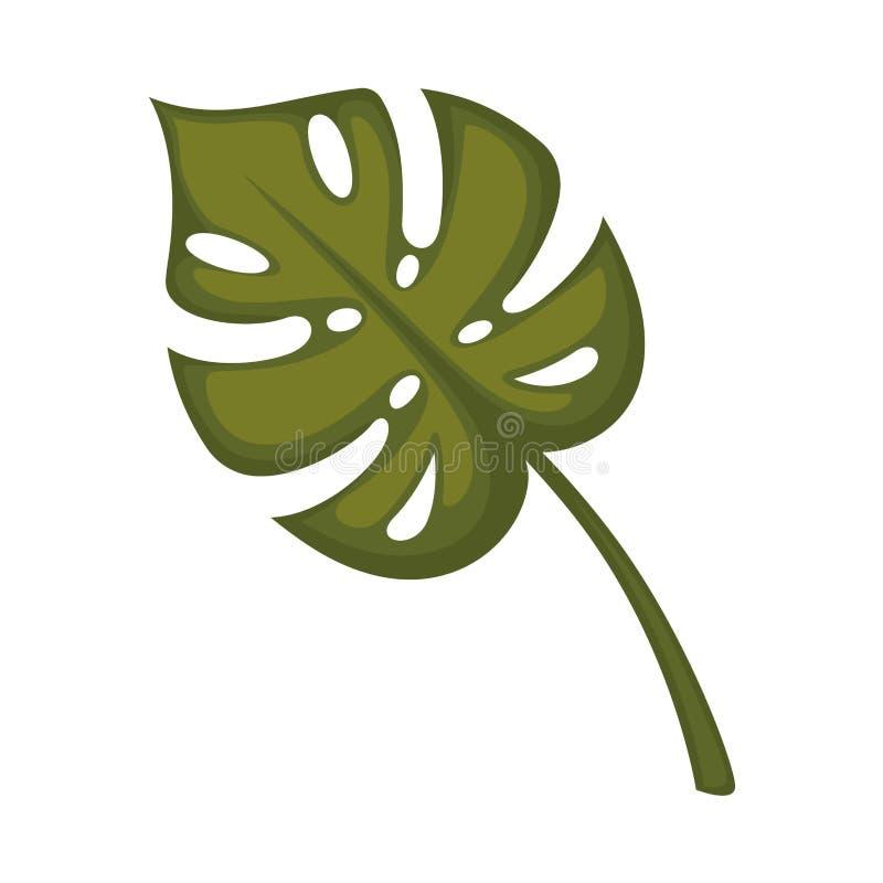 Monstera blad som isoleras på vit Ovanliga sidor för tropisk djungel vektor illustrationer