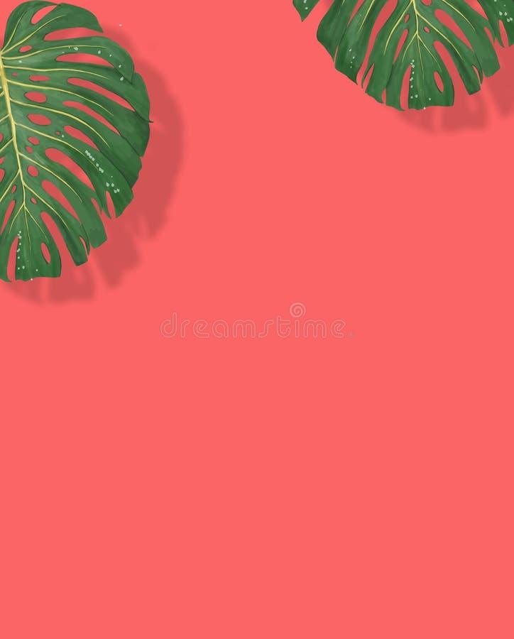 Monstera e philodendron tropicais das folhas no verão mínimo do fundo cor-de-rosa da cor ilustração royalty free