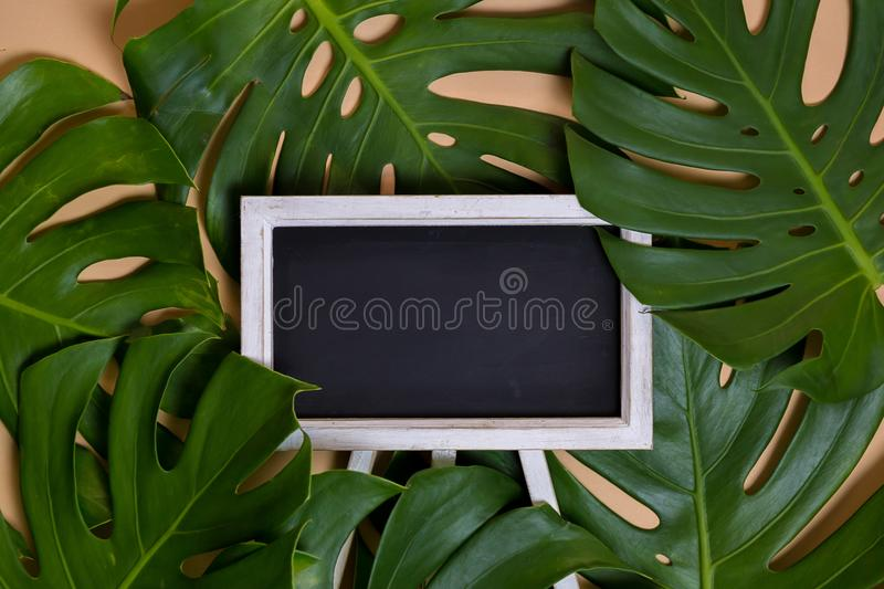 Monstera leaves decorated over creative nude beige pastel background - with empty blackboard for copy space. stock photography