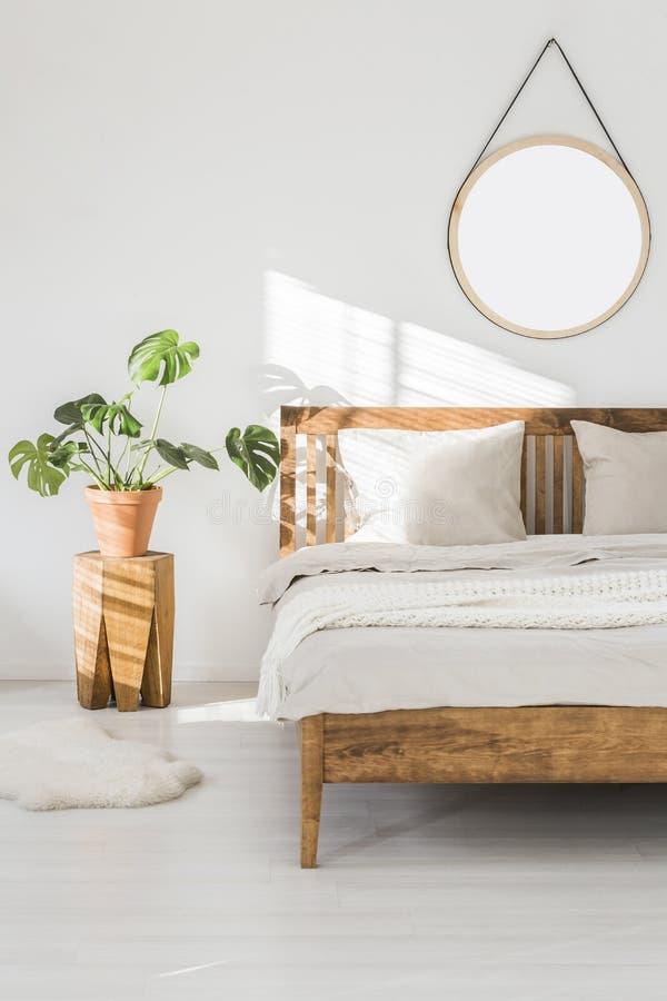 Monstera roślina na drzewnego bagażnika nightstand i round lustrzanym abo zdjęcie royalty free