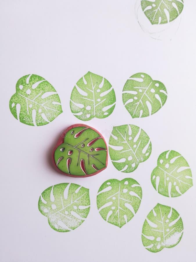 Monstera rubberzegel, blad, monstera, tropisch, tropisch blad royalty-vrije stock foto's