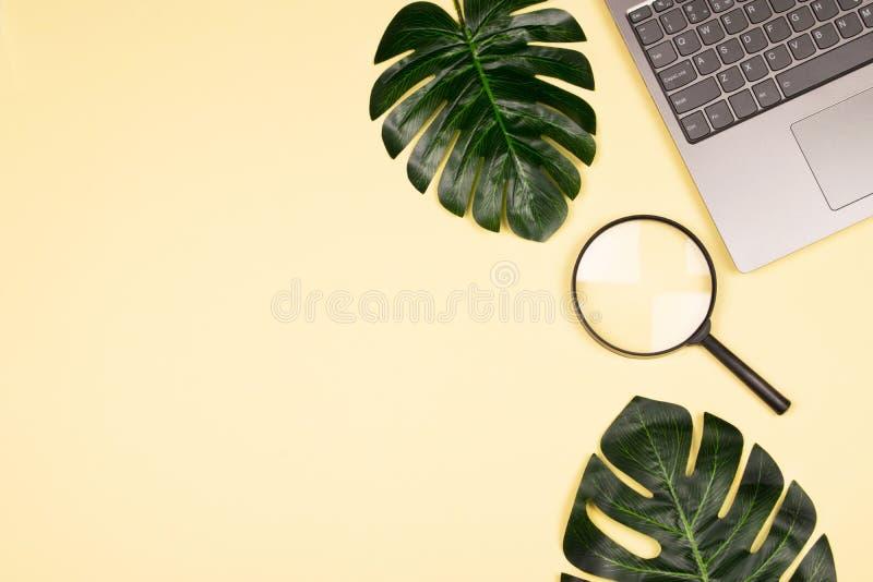 Monstera sidor, bärbar dator och förstoringsglas royaltyfria bilder