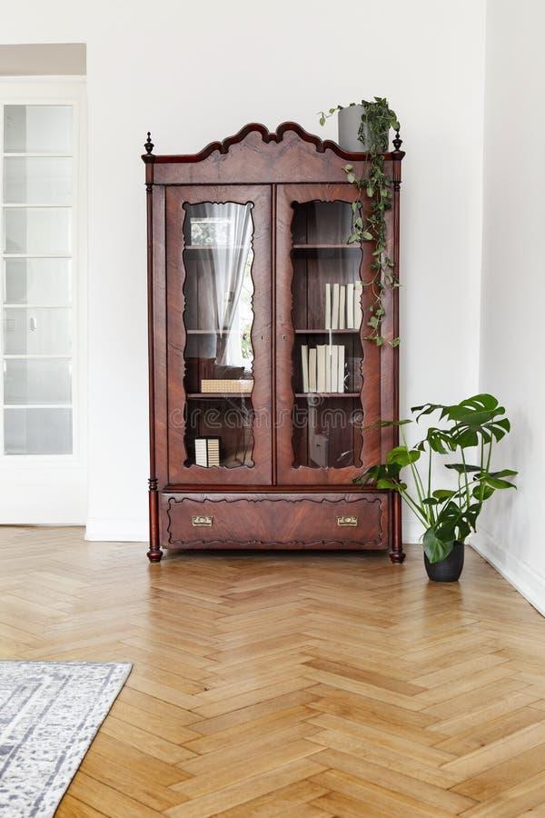 Monstera växt bredvid ett mörkt träskärmkabinett med glass dörrar i en vit vardagsruminre med flo för fiskbensmönsterparkett fotografering för bildbyråer