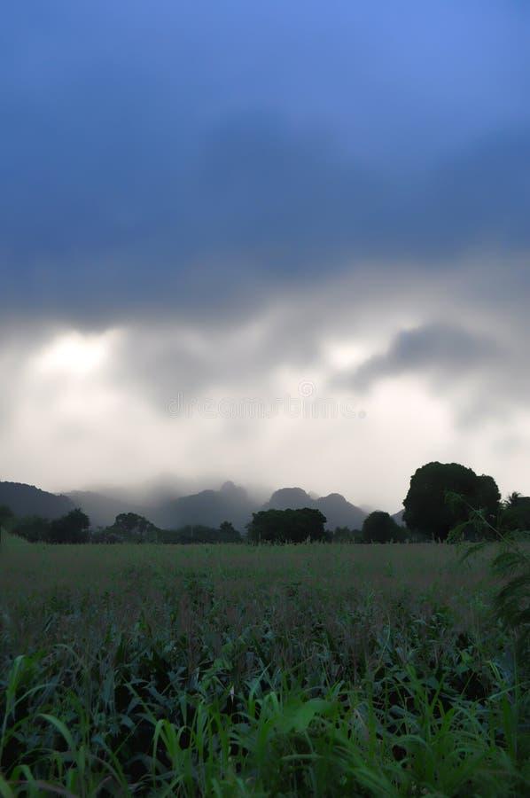 Monsun chmurnieje na Tajlandzkiej wsi obraz royalty free