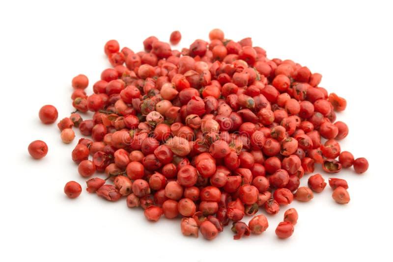 Montão da pimenta vermelha imagem de stock royalty free
