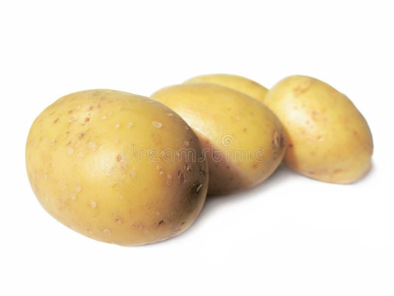 Montão de batatas frescas foto de stock royalty free
