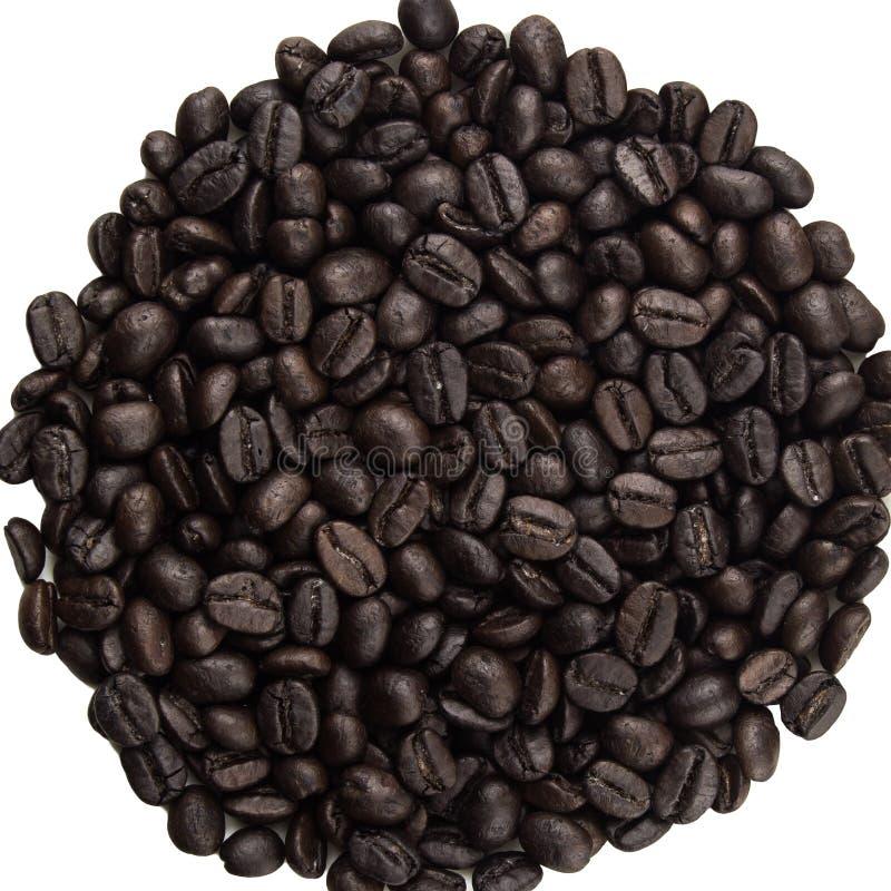 Montão de feijões de café foto de stock