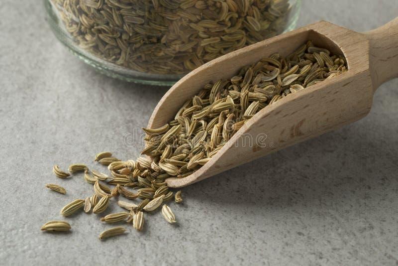 Montão de sementes de erva-doce em uma colher de madeira foto de stock royalty free