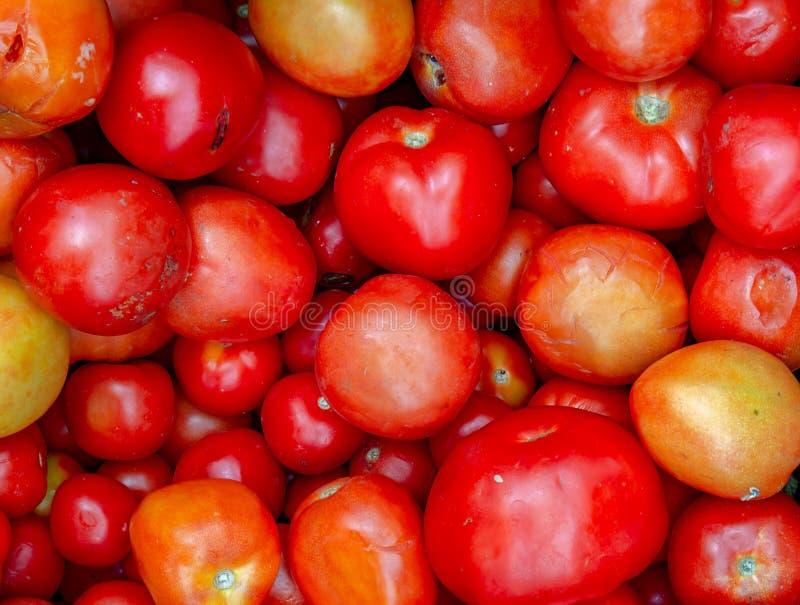 Montão de tomates maduros em um mercado fotos de stock